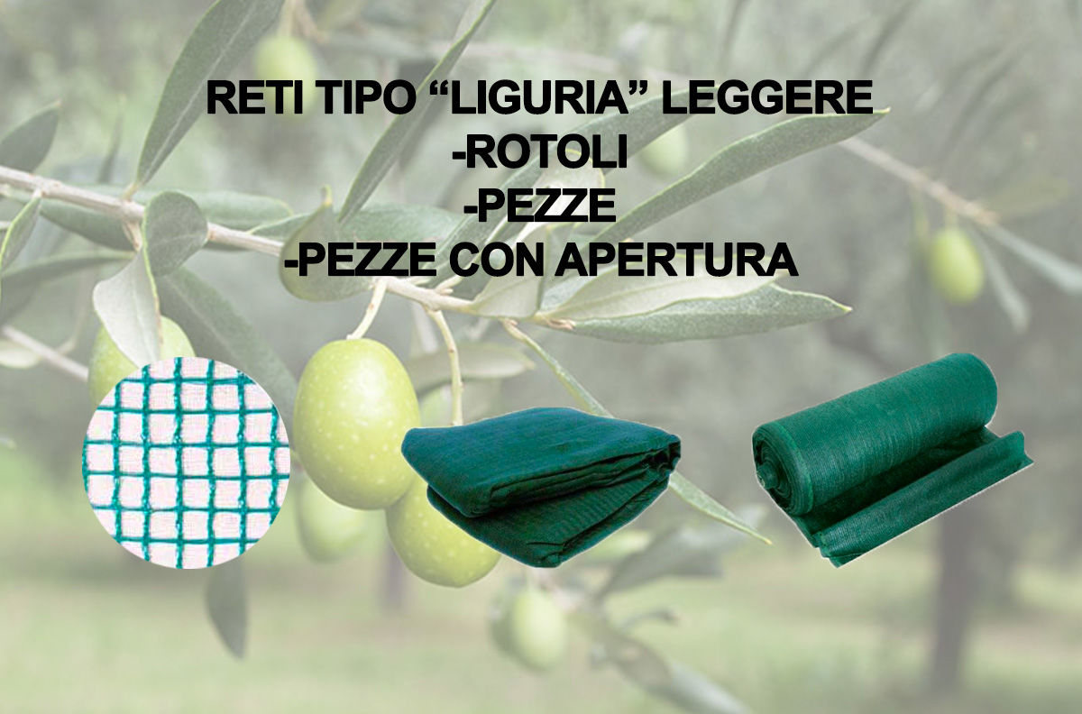 Image de la catégorie Rete Liguria Leggera